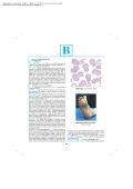 90L water PDF brochure