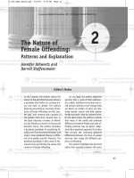 The Nature of Female Offending: Patterns and Explanation