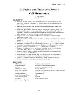 Diffusion and Transport Across Cell Membranes - Biochem Home