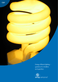 Energy efficient lighting – guidance for installers and specifiers CE61