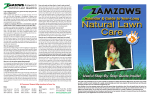 Answers to Common Lawn Questions - Zamzows