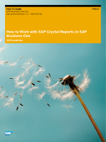 How to Work with SAP Crystal Reports in SAP - Mepa Data AG