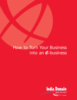 How to Turn Your Business into an e-business - India Domain Web