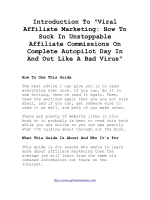 Introduction To Viral Affiliate Marketing: How To Suck In