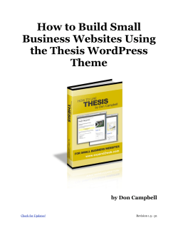 How to Build Small Business Websites Using the Thesis WordPress