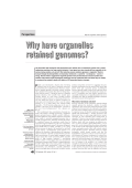 Why have organelles retained genomes? - Molecular Evolution