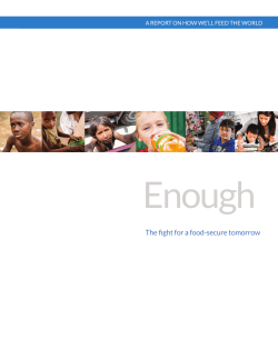 ENOUGH Report - ENOUGH Movement