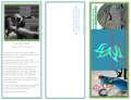 2015 Gina Morri Invitational - Midwest Gymnastics