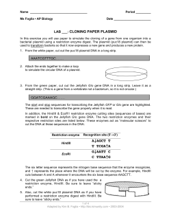Wii console instructions.pdf